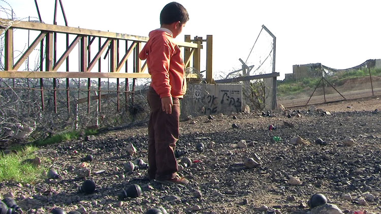 The 'no-man's land' where the olive trees were. The black objects on the ground, shaped like light-bulbs, are Israeli tear gas cartridges.