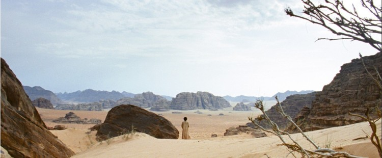Theeb looks out across the desert